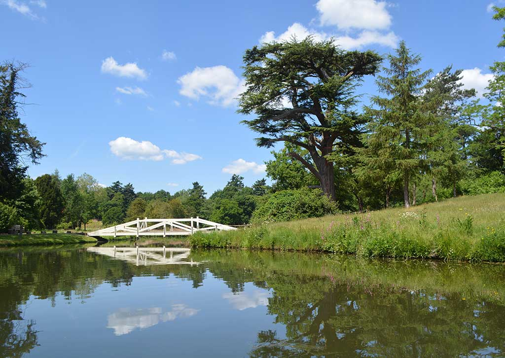 restoration project at Painshill